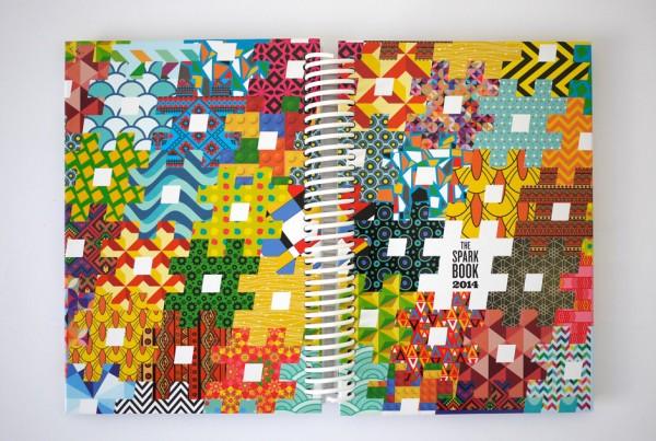 sais-book-cover
